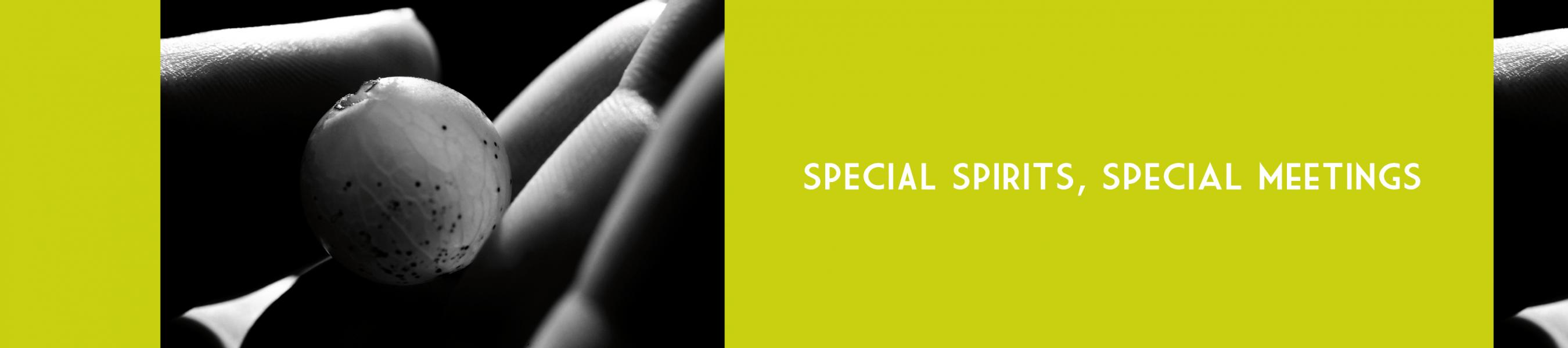 SpecialM-04